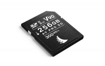 AV PRO SD MK2 256GB V90 (2 PACK)