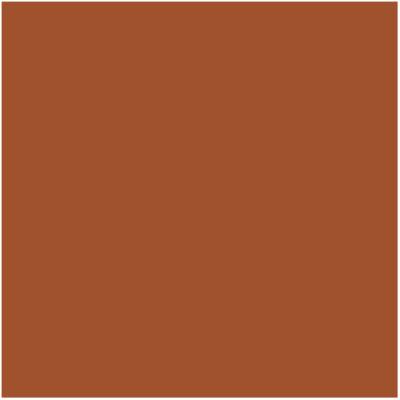 Fondale in carta 2,72x10m Nutumeg