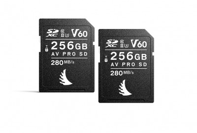 AV PRO SD MK2 256GB V60 (2 PACK)
