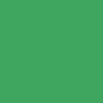 Fondale in carta 2,72x10m Verde Chroma Key